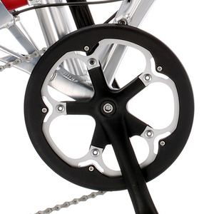 Birdy 52T Chain Ring Guard